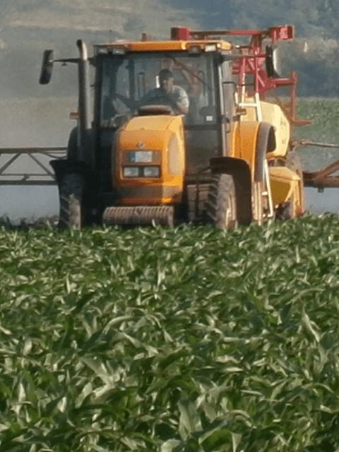 Kukorica, szója és cukorrépa lombtrágyázása